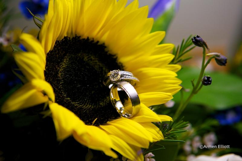 Lehigh Valley Wedding Photographer Armen Elliott